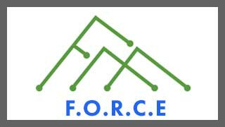 FORCE Ministry: FBCGE